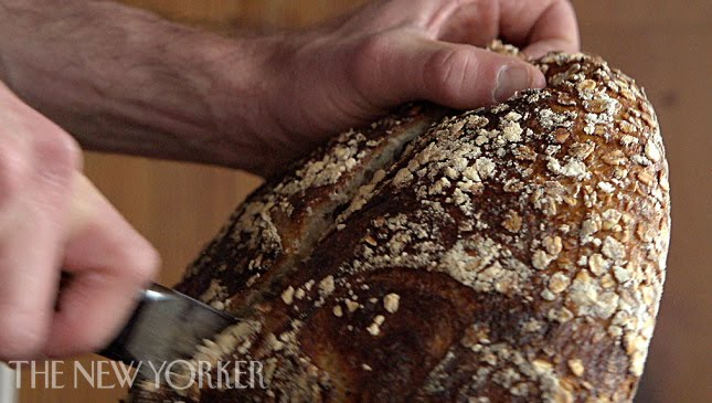 Baking bread at Tartine Bakery – Annals of Gastronomy – The New Yorker